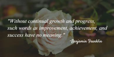 Progress and growth quote